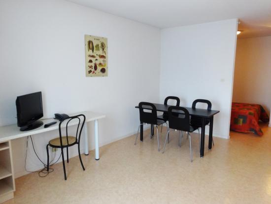 Appart'Hotel La Maison des Chercheurs : Studio 38m²