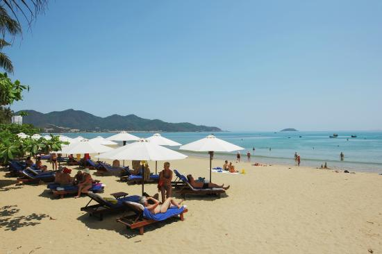 VDB Nha Trang Hotel: Beach