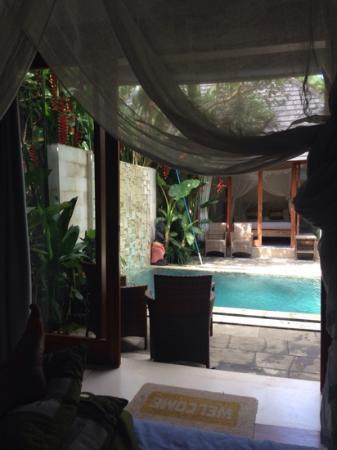 Tri Sandhya Villa: two steps then relax time.....