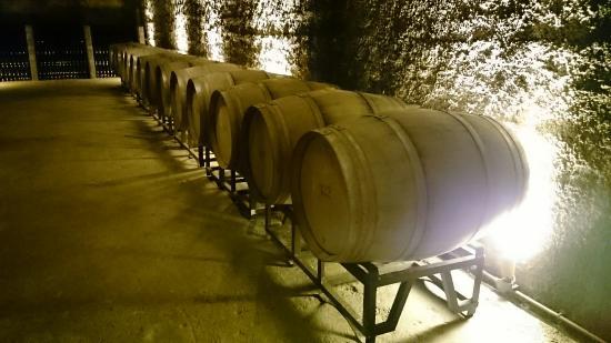 Berlucchi Winery