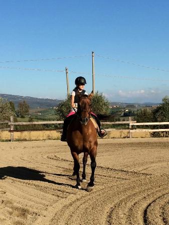 Centro Equestre Villa Bassi