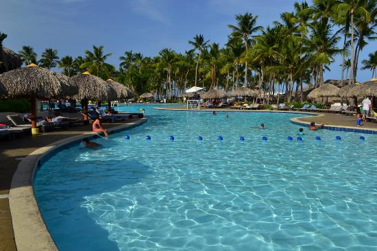 le piscine est superbe photo de club med punta cana punta cana tripadvisor. Black Bedroom Furniture Sets. Home Design Ideas