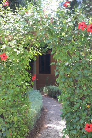 Dar Zemora: Garden archways