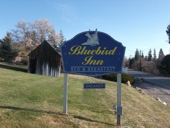 Bluebird inn sign