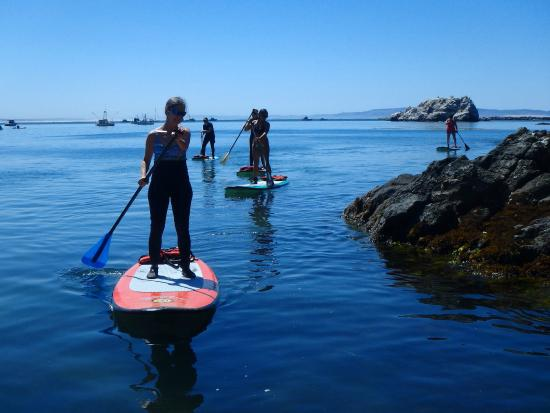 Avila Beach Paddlesports: Intro to Standup Paddleboarding Classes
