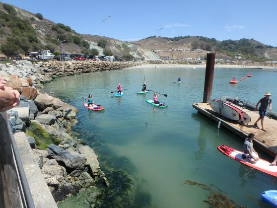 Avila Beach Paddlesports: Easy Launching from Dock