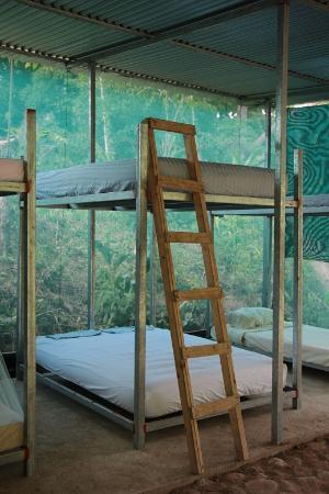 Utopia Tica Organic Farm & Hostel