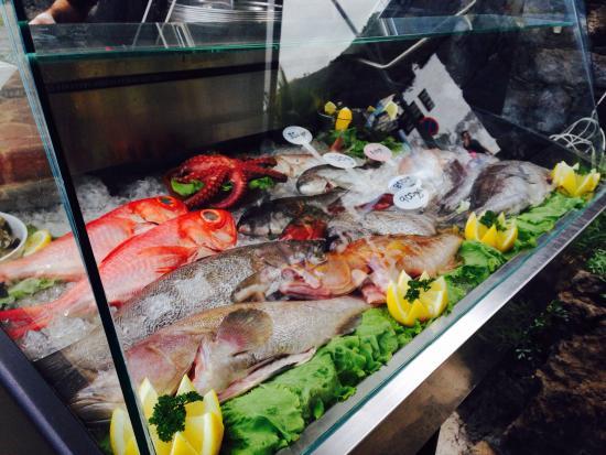 El Caleton: Variedad de pescado diario