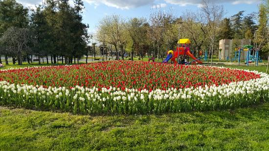 Bursa Culture Park