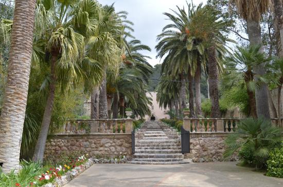 Jardins de Alfabia: fotografía de Jardines de Alfabia, Bunyola - TripAdvisor