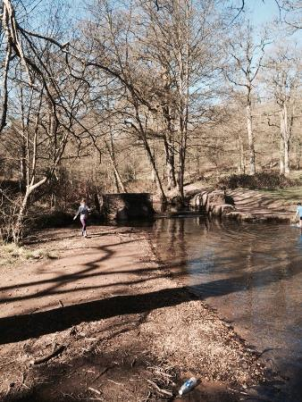 Wenchford Picnic Site: River shallow enough to paddle in