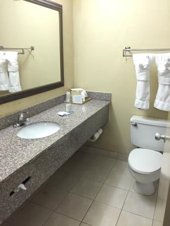 Rodeway Inn Millenium: Comfort Inn Millennium