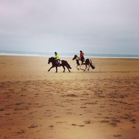 Woolacombe Riding Stables: Amazing!!