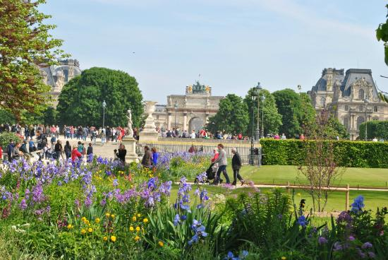 The tuileries gardens picture of jardin des tuileries for Tuilerie jardin