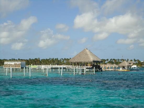 Marinarium Excursions - Sunny Day Sailing Cruise : Aquário