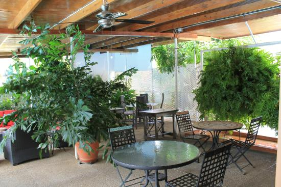 Norma's Bed and Breakfast : Outdoor patio