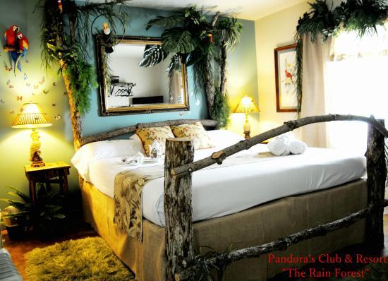 Pandora's Forest Resort & Nightclub : Tropical Rainforest King Room