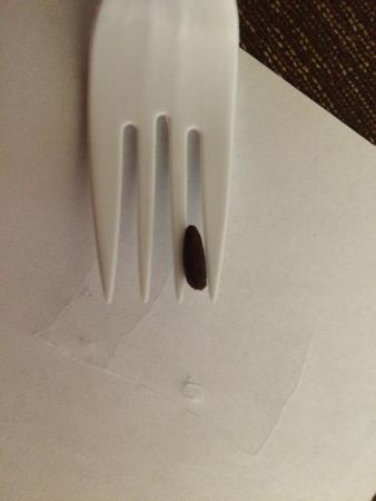 BEST WESTERN PLUS Historic Area Inn: Rodent poop?