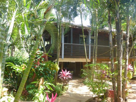 Mame Tree Bungalows : Carribean bungalow