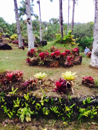 Kilauea, Hawái: Silver Falls Ranch