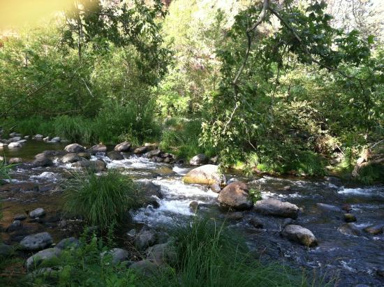 Huckaby Trail: Steps
