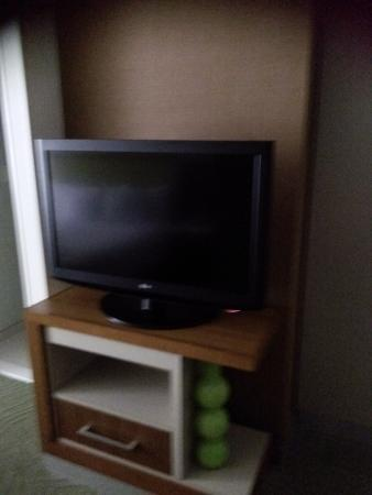 SpringHill Suites Tampa North/I-75 Tampa Palms: Flat Screen Tv