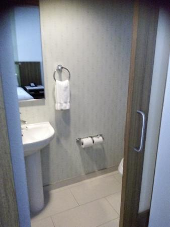 SpringHill Suites Tampa North/I-75 Tampa Palms : Separated toilet and sink