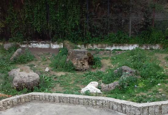 Zoo de Ben Aknoun