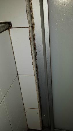 ทิพย์วิมาน รีสอร์ท: Mug og skimmelsvamp på badeværelset