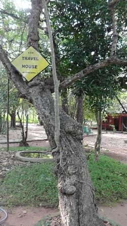 Travel House Sigiriya: Giardino interno