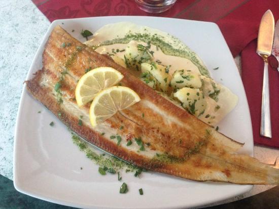 Restaurante Oliva: Honey-mustard sole