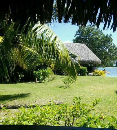 Moorea Fare Miti: Vue (partielle) du bungalow