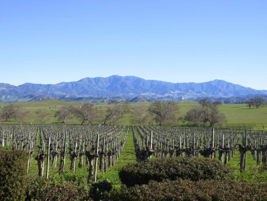 Santa Ynez Valley: San Ynez Valley