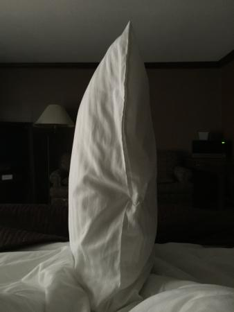 Talbot Trail Inn & Suites : Bullet proof pillows! Don't forget your Aspercream...you will need it!