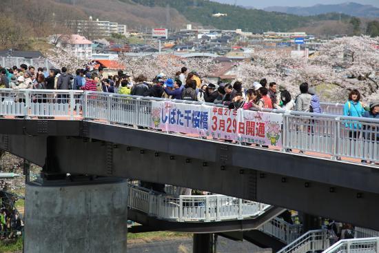 Shibata-machi, Nhật Bản: 千桜橋