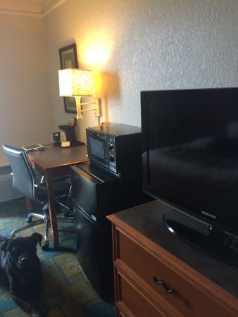 La Quinta Inn & Suites Nashville Airport/Opryland: Fridge/freezer, microwave and TV with a cameo by Toby.