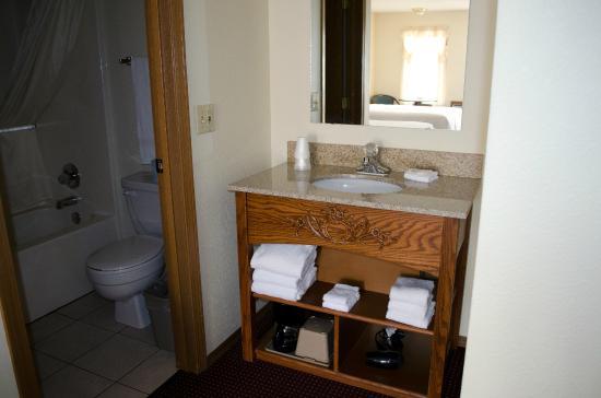 Honeysuckle Inn and Conference Center: Room Vanity