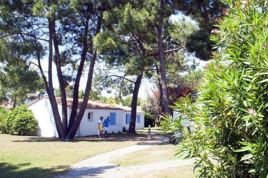 Nemea Residence la Cascade Dolus d'Oleron : Résidence la Cascade extérieure