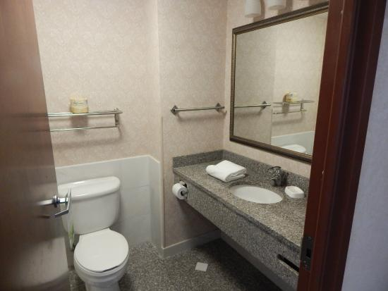 Drury Inn & Suites Indianapolis Northeast: bathroom area