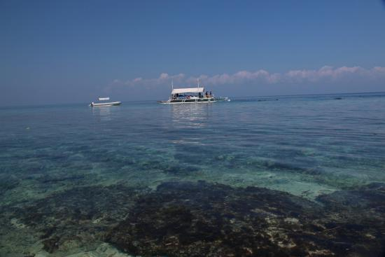 how to get to balicasag island from cebu