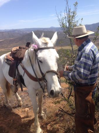Baja Rancho La Bellota: Raul giving Rocinante some love love atop the mountain