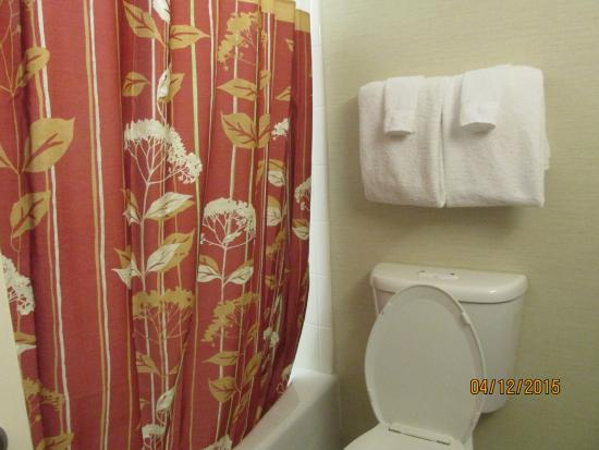 Courtyard By Marriott Bethesda Chevy Chase Red And Gold Shower Curtain