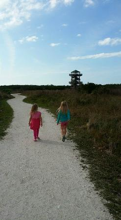 Bradenton, FL: walking to the observation tower at Robinson Perserve