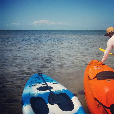 Bradenton, FL: Sunshine Skyway Bridge in the distance - kayaking Robinson Preserve