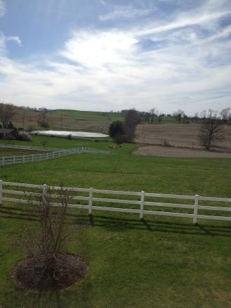 Wilmot, OH: View from first floor room