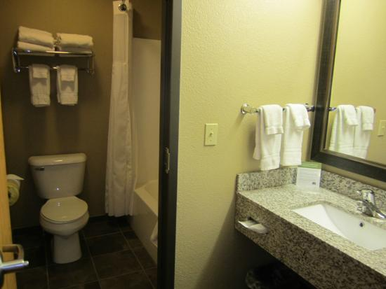 Awe Inspiring Bathroom Picture Of Americinn By Wyndham Bay City Ibusinesslaw Wood Chair Design Ideas Ibusinesslaworg