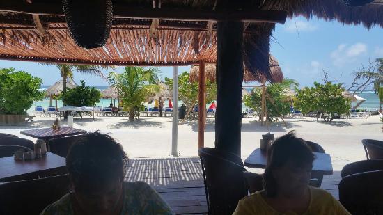 Pez Quadro Beach Club: Pez Quadro at 40 Cannons