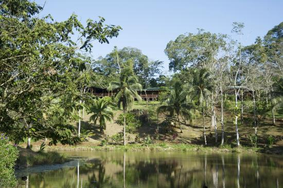 Laguna del Lagarto Lodge: view to restaurant