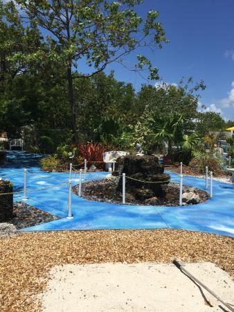 Island Dolphin Care