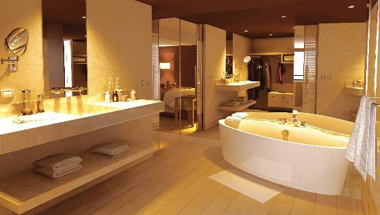La Junior Suite, cuenta con un amplio cuarto de baño, tina y ducha ...
